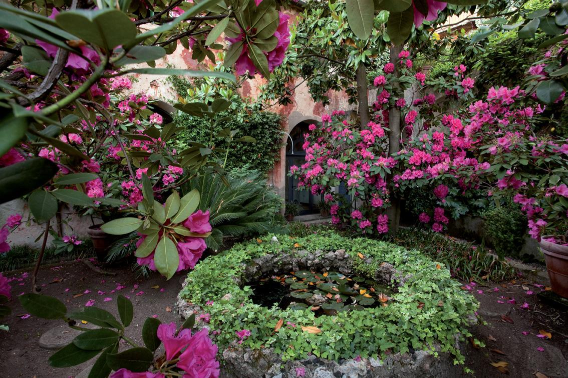 Ll programma di gioved 27 agosto for Programma progettazione giardini