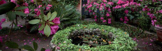 giardini-segreti-buggiano-castello