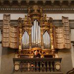 Organo_12