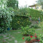 giardini_buggiano_16
