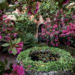 giardini_buggiano_8