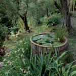 giardini_buggiano_9