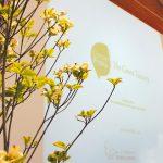 discover-pistoia-presentazione