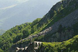 montagna-pistoiese-grifoni-discoverpistoia