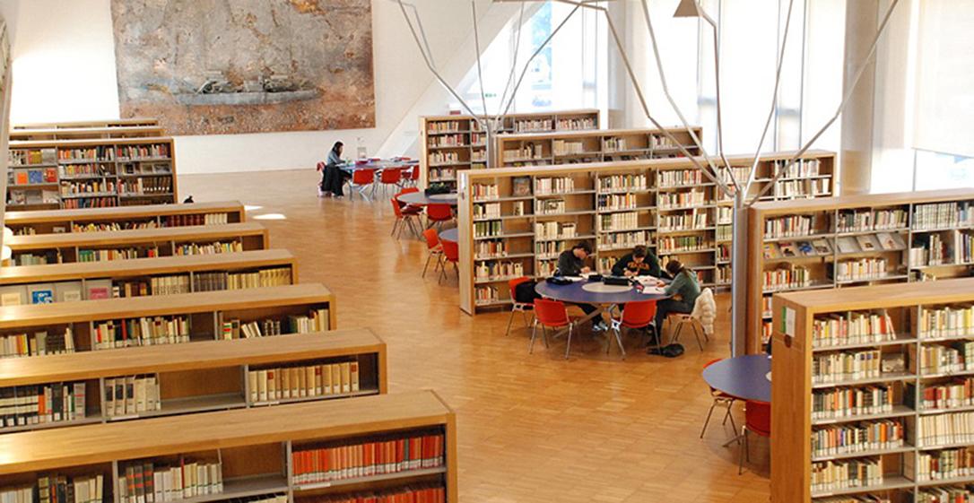 383x198 biblioteca