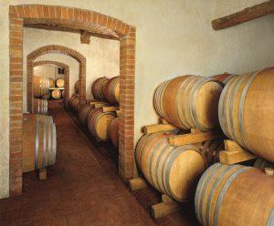 vino vegano fattoria casabianca fuoriexpo 3