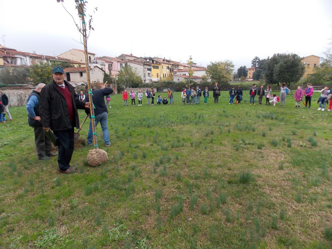 festa albero pistoia 02