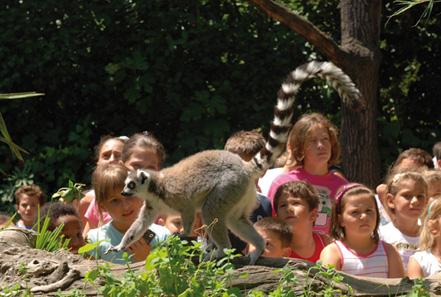 zoo pistoia 04
