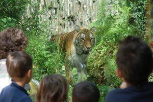 zoo pistoia gallery 02