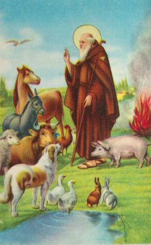 icona sant antonio abate pistoia