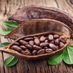 cacao-gelateria-monterosa