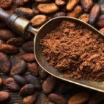 cacao-gelateria-monterosa-pistoia