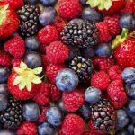 frutti-bosco-gelateria-monterosa