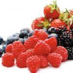 frutti-di-bosco-monterosa-pistoia