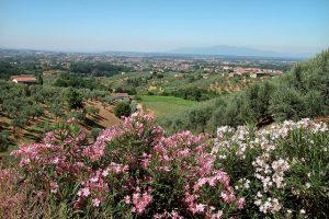 Itinerari Lamporecchio 8
