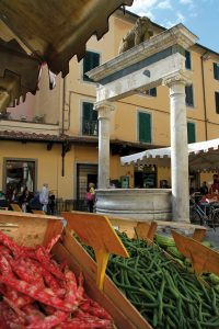 Pozzo Leoncino
