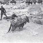 Guado della spedizione Tucci nella Valle del Chandra (Lahaul, India) 1933