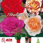 rose-barni-fiore-discoverpistoia