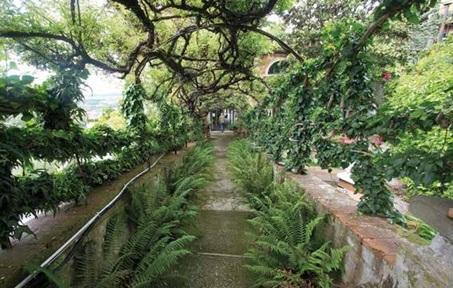 Buggiano Castello, tra natura e storia