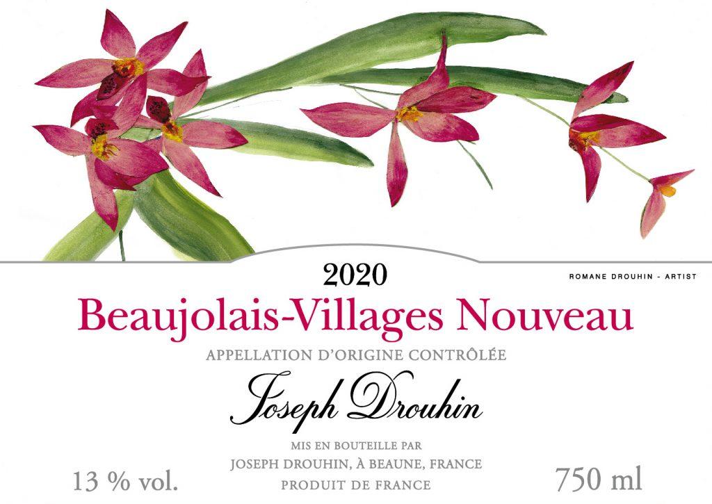 Beaujolais nouveau 2020 da Enoteca Lavuri